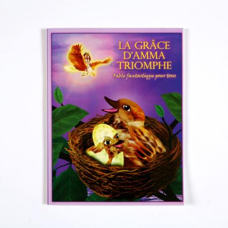 livres pour enfants la grace d amma triomphe
